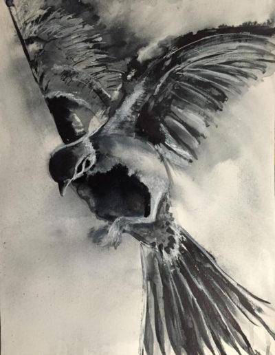 flightpath017